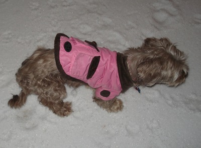 Lily in her pink winer jacket