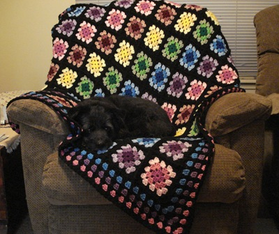 Belty modeling the first afghan I ever crocheted