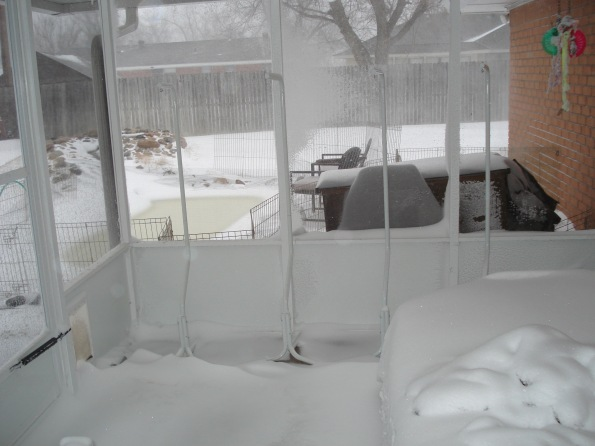 Snow in the screened in patio